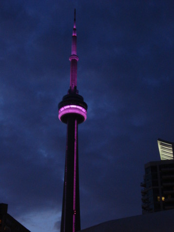 CN Tower Illumination for Purple Day